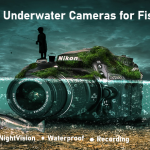 5 Best Underwater Cameras for Fishing in (2020!)