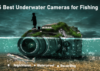 5 Best Underwater Cameras for Fishing in (2020!)
