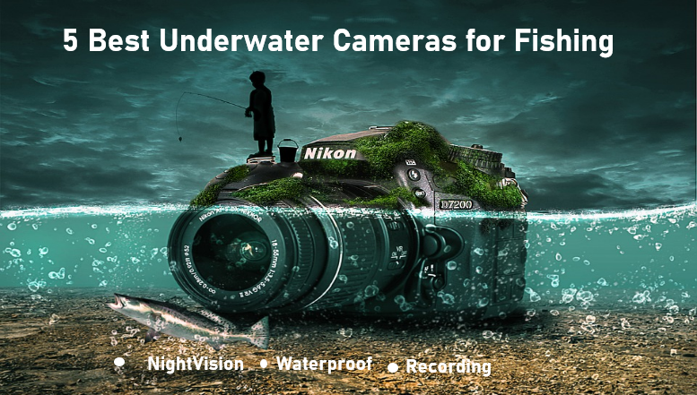 5 Best Underwater Cameras for Fishing