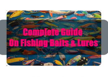 Complete Guide On Fishing Baits & Lures